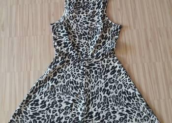 ce37ac87 Sukienka Panterka 38 M H&M