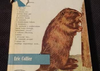NAD RZEKĄ BOBRÓW – Eric Collier - 1965