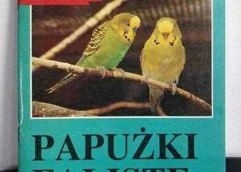Książka, zwierzęta – Papużki Faliste.