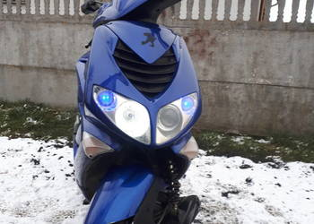 speedfigh2