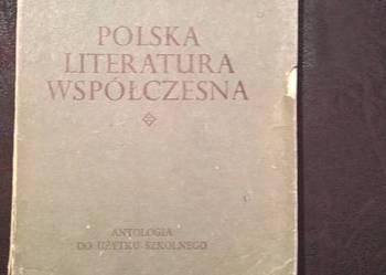 Polska Literatura współczesna, R.Matuszewski