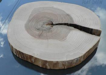 Plaster drewna jesionowego o śr. 38-50 cm BEZ KORY