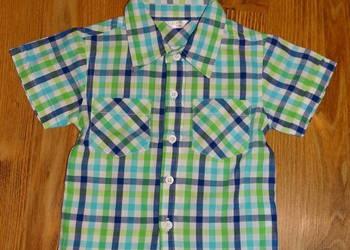 koszula krata r.80  (alma31)