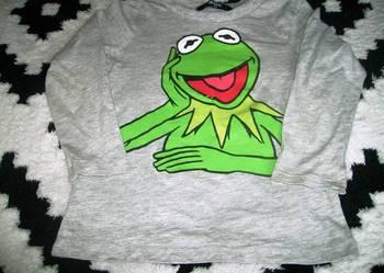 Bluzka 2-4 lata Kermit
