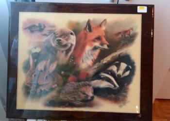 Obraz lakierowany Steve zwierzęta