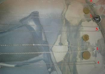 SREBRO łańcuszki 5 sztuk z zawieszkami i bez po 20 zł i 30