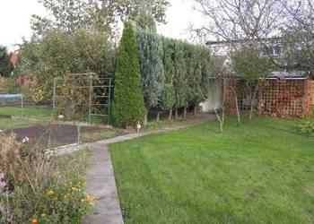 Ogródek działkowy z altanką ROD Kuźniki, ogrodzony 348 m2