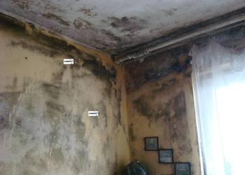 KRISOFF odgrzybianie ścian , mieszkań , domów