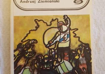 Andrzej Ziemiański: DAIMONION