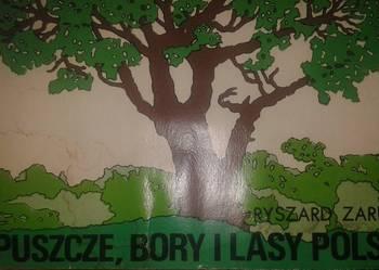 album puszcze.bory i lasy polski