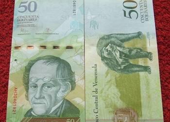 WENEZUELA 50 Bolivarów NIEDŹWIEDŹ Kolekcjonerski Banknot UNC