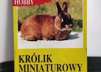 Książka, zwierzęta – Królik Miniaturowy.