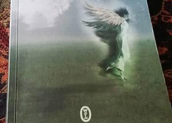 Pod mocnym aniołem
