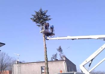 Podnośnik koszowy wycinka drzew rębak zwyżka