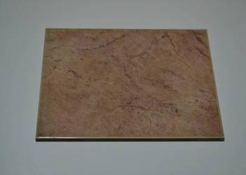 ALTAMIRA SIENA SALONI PŁYTKA ŚCIENNA 20x25