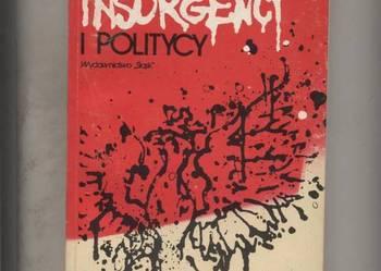 Insurgenci i politycy