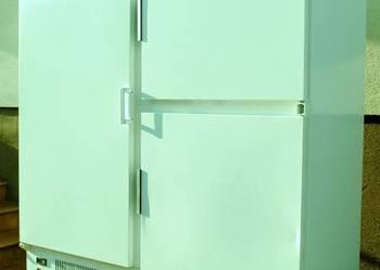 Szafa chłodnicza zapleczowa BOCHNIA 1,6m Dostawa