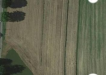 Działka rolna ze stawem Pielgrzymowice/do negocjacji