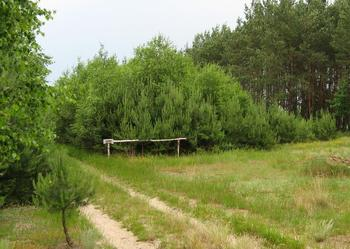 Atrakcyjna działka rekreacyjna - 1200 m.kw. w Radachówce k. Kołbieli nad Świdrem