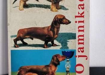 Książka, zwierzęta, psy – O Jamnikach.