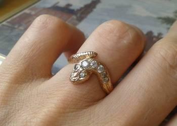 Złoty pierścionek żmijka.
