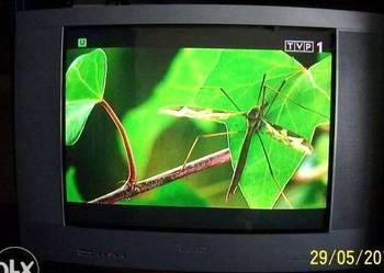 """Telewizor """"PHILIPS"""" 29cali model 29PT8306/12R +pilot Stan bd"""
