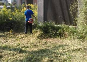 wykaszanie kosom spalinowa,wycinki drzew,krzewów wywózki