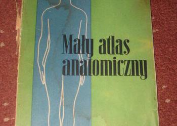 Mały atlas anatomiczny Witold Sylwanowicz