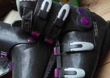 buty narciarskie 42