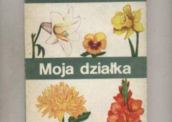 ABC kwiaciarstwa  Moja działka