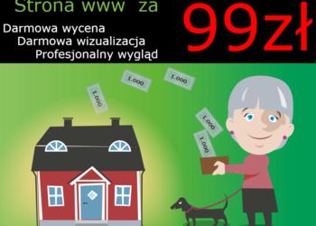 Strona www, Sklep, Blog już za 99 zł ! Nie przegap!