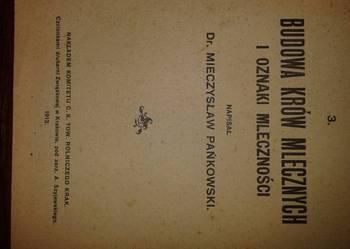 budowa krow mlecznych i oznaki mlecznosci  1913r.