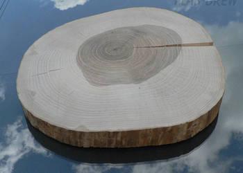 Plaster drewna jesionowego o śr. 28-38 cm BEZ KORY