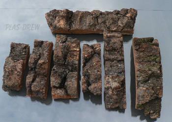 Kora z brzozy, brzozowa 3,5 cm - Susz, dekor.