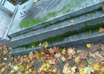 Czyszczenie nagrobków,mycie pomników, sprzątanie, opieka