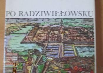 Marek Borucki - Po radziwiłłowsku