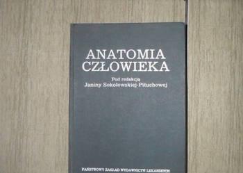 Książki o tematyce medycznej dla studentów i nie tylko.