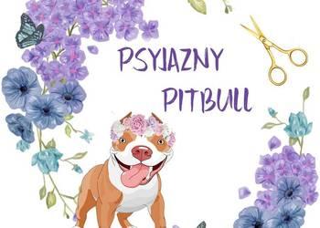 Strzyżenie psów psi fryzjer 501-533-225 Tarchomin Białołęka