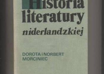 Historia literatury niderlandzkiej  Zarys