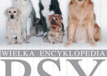 Wielka Encyklopedia - PSY